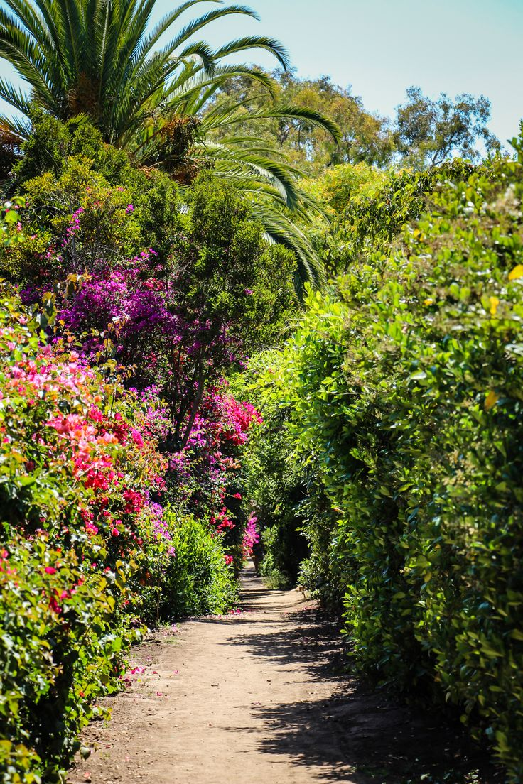 Hammonds Meadow Trail by Hammonds Beach in Montecito (Santa Barbara, California)
