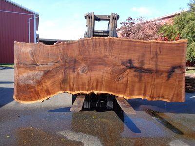 Claro Walnut Slabs - Good Hope Hardwoods - Walnut Slabs & Specialty hardwood lumber