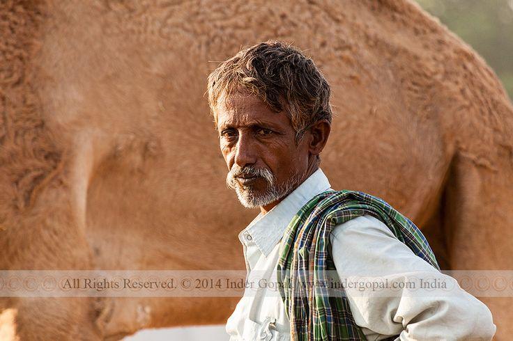 Pushkar Mela - Camel trader