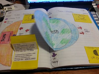 Tides in the interactive science notebook