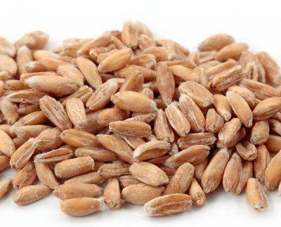 Insalata di farro: ideale contro il colesterolo!