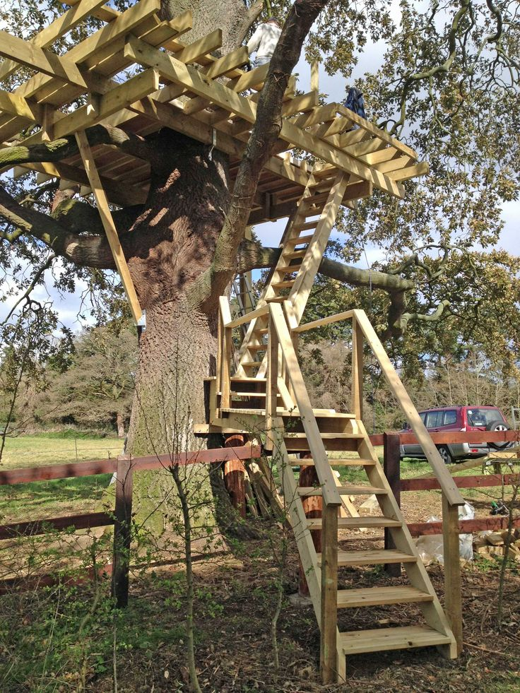 Treehouse Stairs | Adult Treehouse Hideaway in 2019 | Tree ...