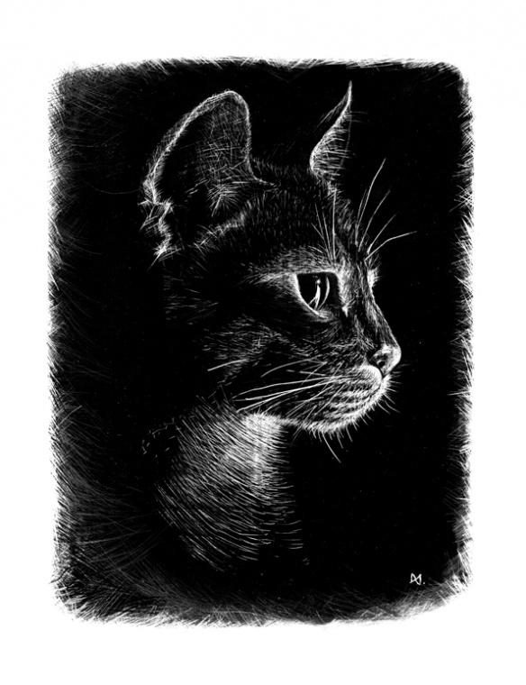 Portrait de mon chat // Encre de chine, Exacto