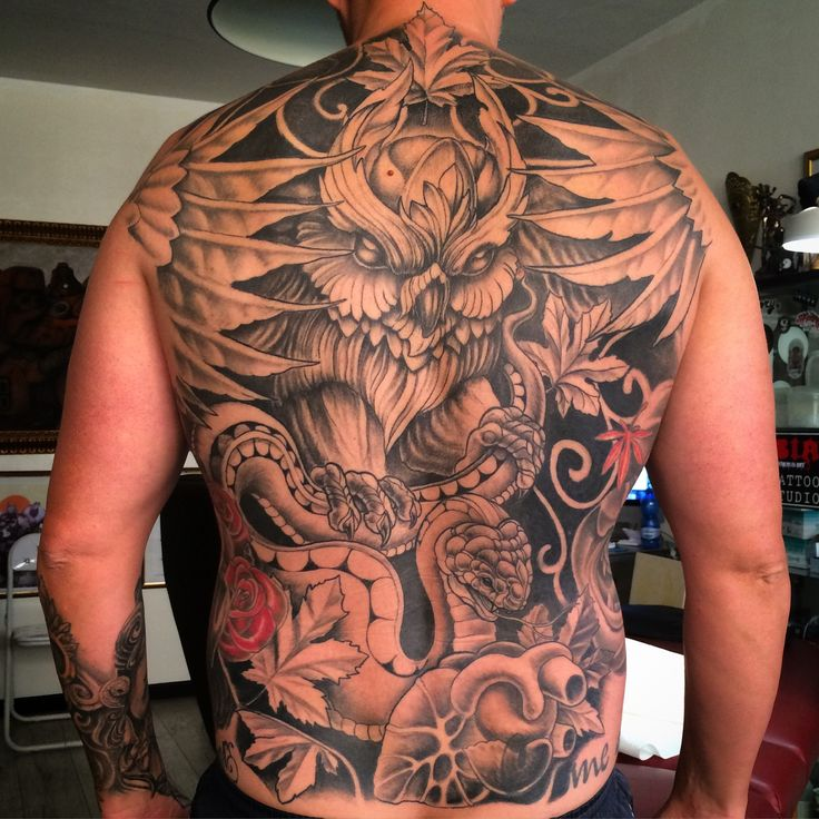 Healed, backpiece #owl #tattoo