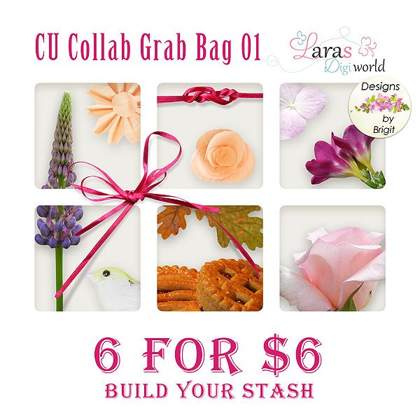6 for $6 ONLY FOR A LIMITED TIME! CU Collab Grab Bag 01 by Designs by Brigit and Laras Digi World