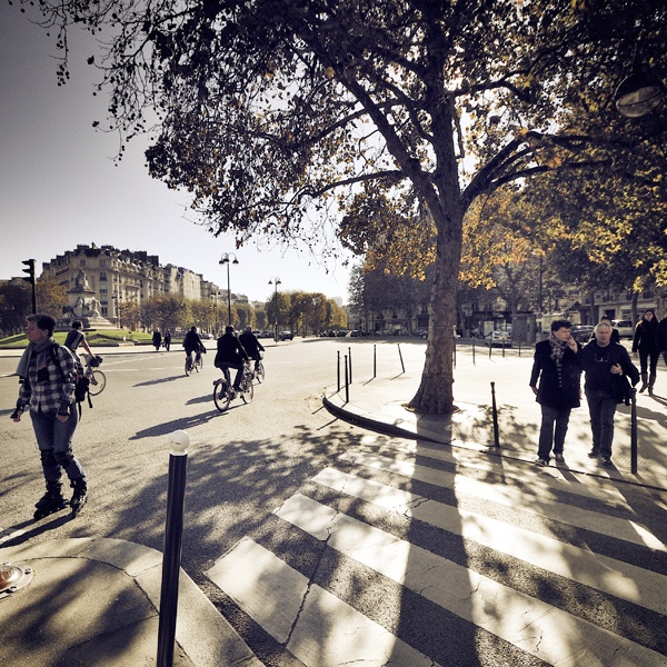Life, tree, shadows - Avenue de Saxe - Paris 7 by Damien Vassart, via Behance. Variety of Paris photos here with pretty lighting and muted colors (CW10-2)