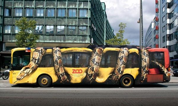 Bus and snake