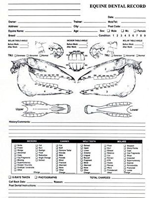 Surgical Instrument Specialists Equine Dental Chart For Dentistry And Veterinary Professional