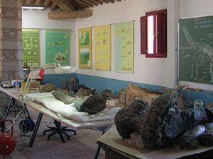 El Aula de Recuperación Paleontológica   Espacio donde se puede observar todo el proceso al que se someten los huesos fósiles de dinosaurio, desde que éstos llegan del yacimiento, hasta que finalmente están preparados para su estudio y/o exposición definitiva.