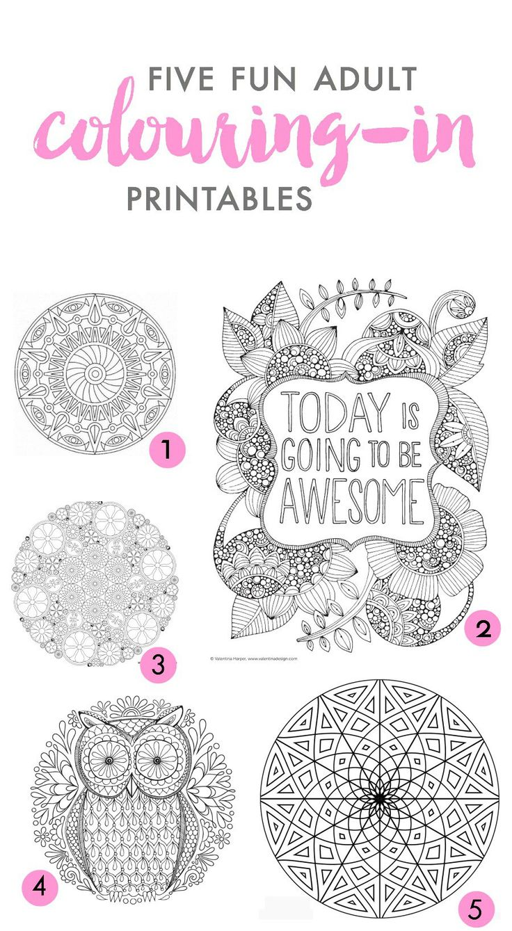 five of the best adult colouring in printables