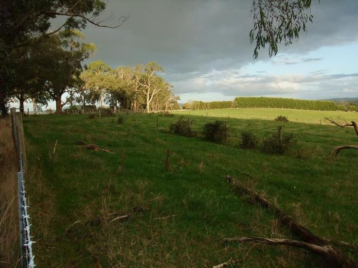 Lot 3/140 Holden Road Silvan VIC 3795 | Vacant Land for sale | domain.com.au