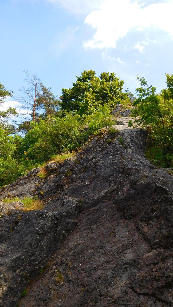 góra Zelejowa, Świętokrzyskie [Holy Cross Mountains]