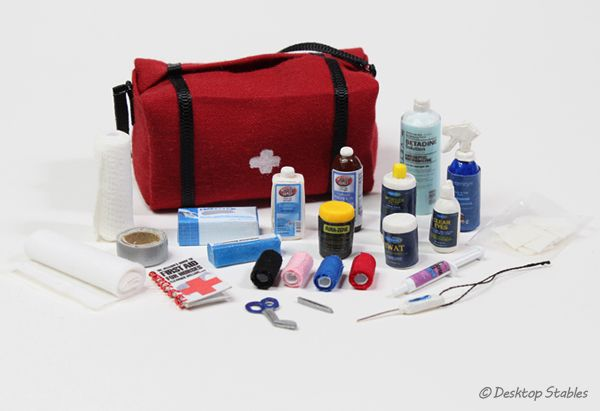 Model Horse First Aid Kit by Desktop Stables (with printable label link)