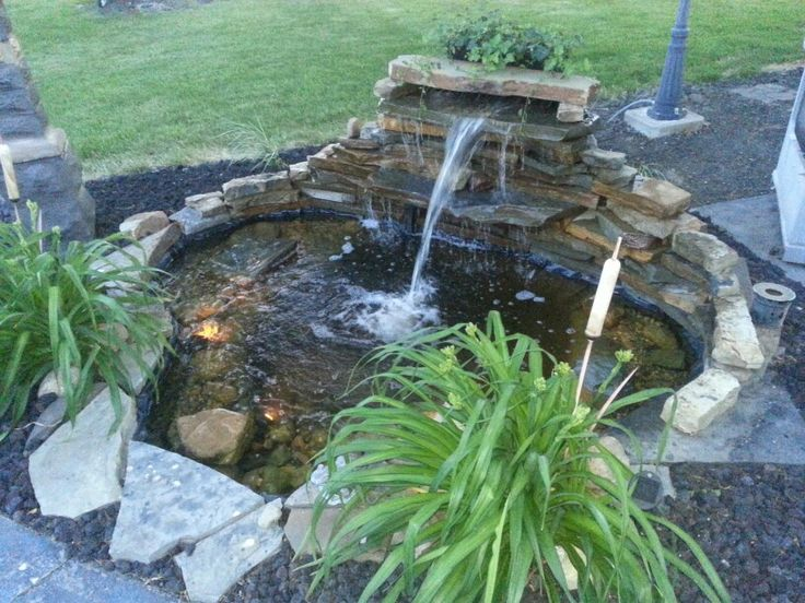 46 best images about dream house on pinterest backyard for What fish should i put in my pond