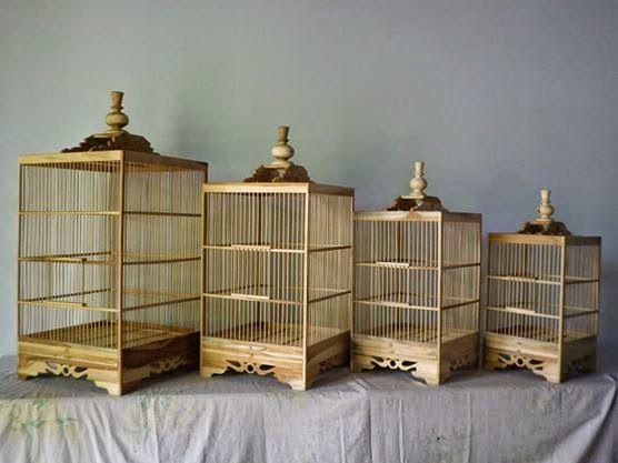 Tips Membuat Kandang untuk Beternak Kacer