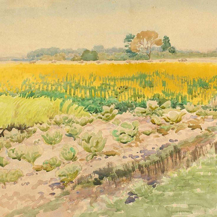 """Stanisław Stefan Zygmunt Masłowski  """"Łubin"""", akwarela, 1924."""