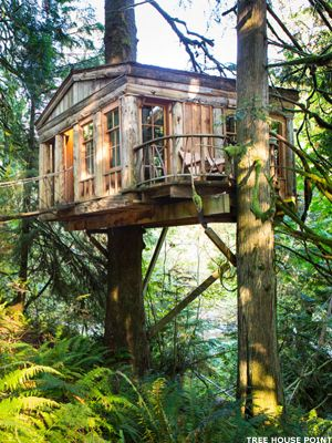 7 Cool Tree House Hotels - MainStreet