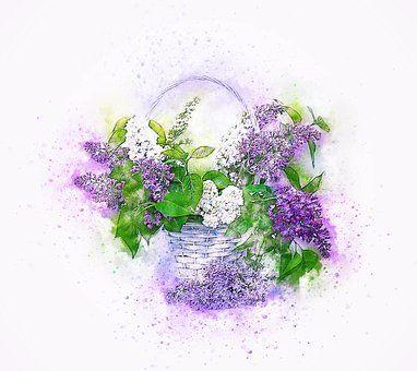 Bloemen, Lila, Mand, Kunst, Natuur