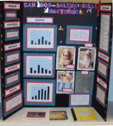 Phillipsburg Christian Academy - Laura's Science Fair Project 2006