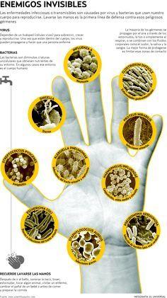 """OPERACIÓN """"MANOS LIMPIAS"""" El aseo personal y la disposición adecuada de la basura pueden protegerlo de enfermedades tan comunes como peligrosas. La Red de Sociedades Científicas Médicas insiste en vigilar la calidad del agua. Por Efraín Castillo / El Universal http://www.eluniversal.com/aniversario/a-cuidarse/120507/operacion-manos-limpias"""