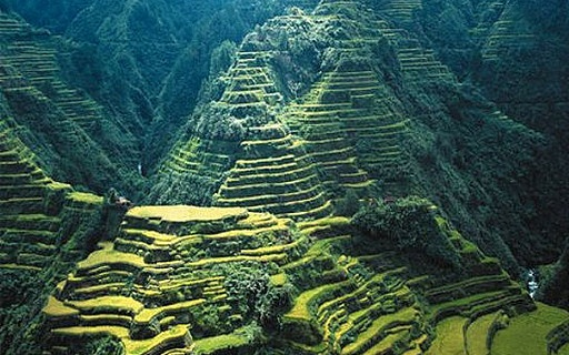 Rice Terraces Baguio City Philippines Favorite Places Spaces Pinterest Terrace