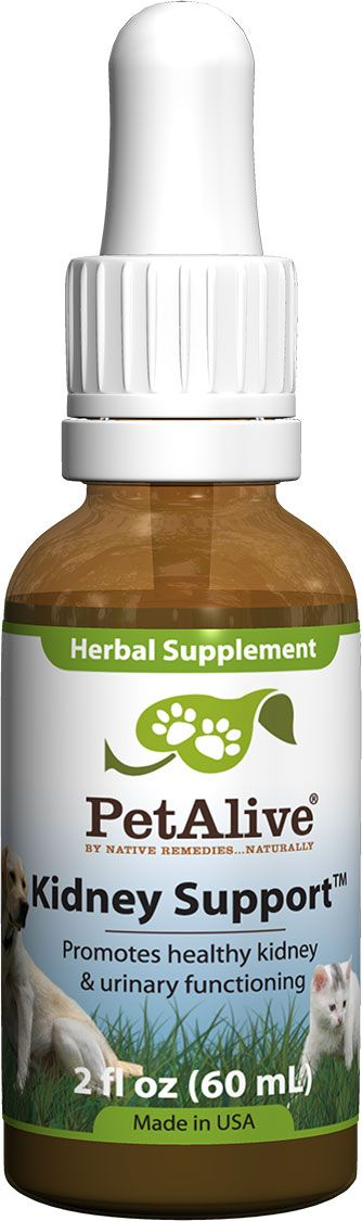 Best Natural Suplements To Support Kidney Disease In Dogs