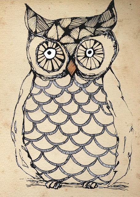 Owl illustration - Sofie Rolfsdotter