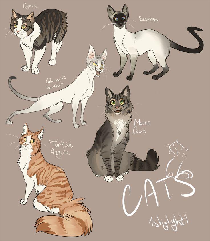 Catsss by 1skylight1.deviantart