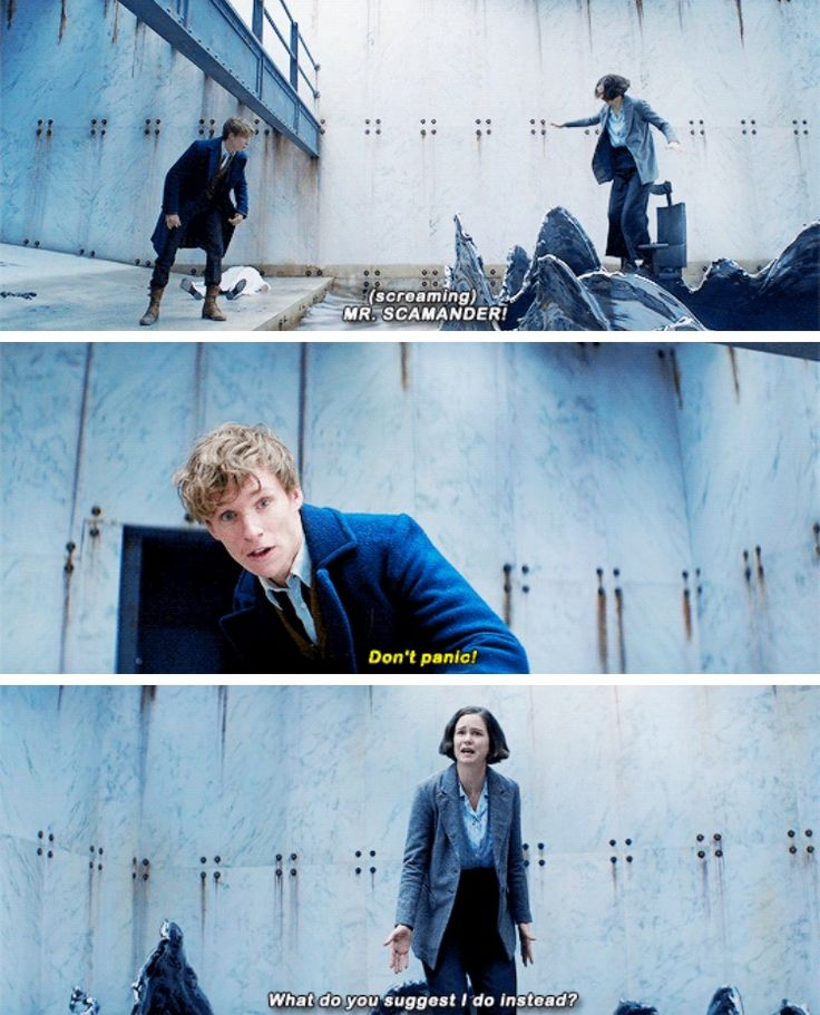 """I can't believe she was polite enough to call him Mr. Scamander. I would have yelled, """"Idiot, I'm about to drown in liquidized dementor! Help!"""""""