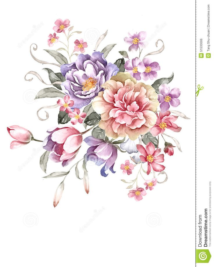 Watercolor Illustration - Download From Over 57 Million High Quality Stock Photos, Images, Vectors. Sign up for FREE today. Image: 51533006