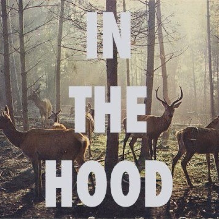 In the H/Wood