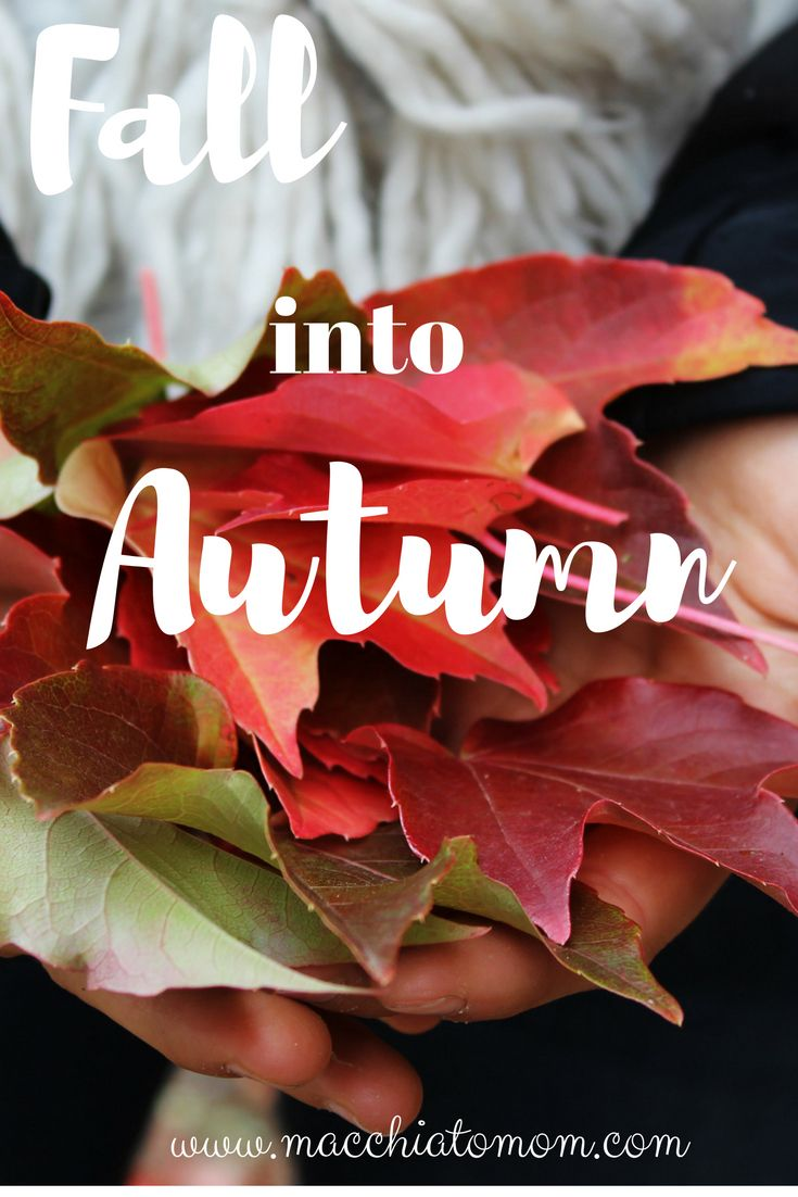 Why the fall is awesome and the fun activities you can do with the kids
