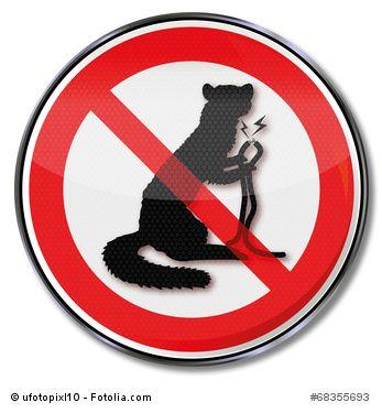 Das Verbotsschild für den #Marder. Setzen Sie sich gegen den Marder durch und #vertreiben diesen aus Ihrem Haus oder #Fahrzeug. Hilfreiche Tipps und Tricks finden Sie auch auf http://marder-vertreiben.org