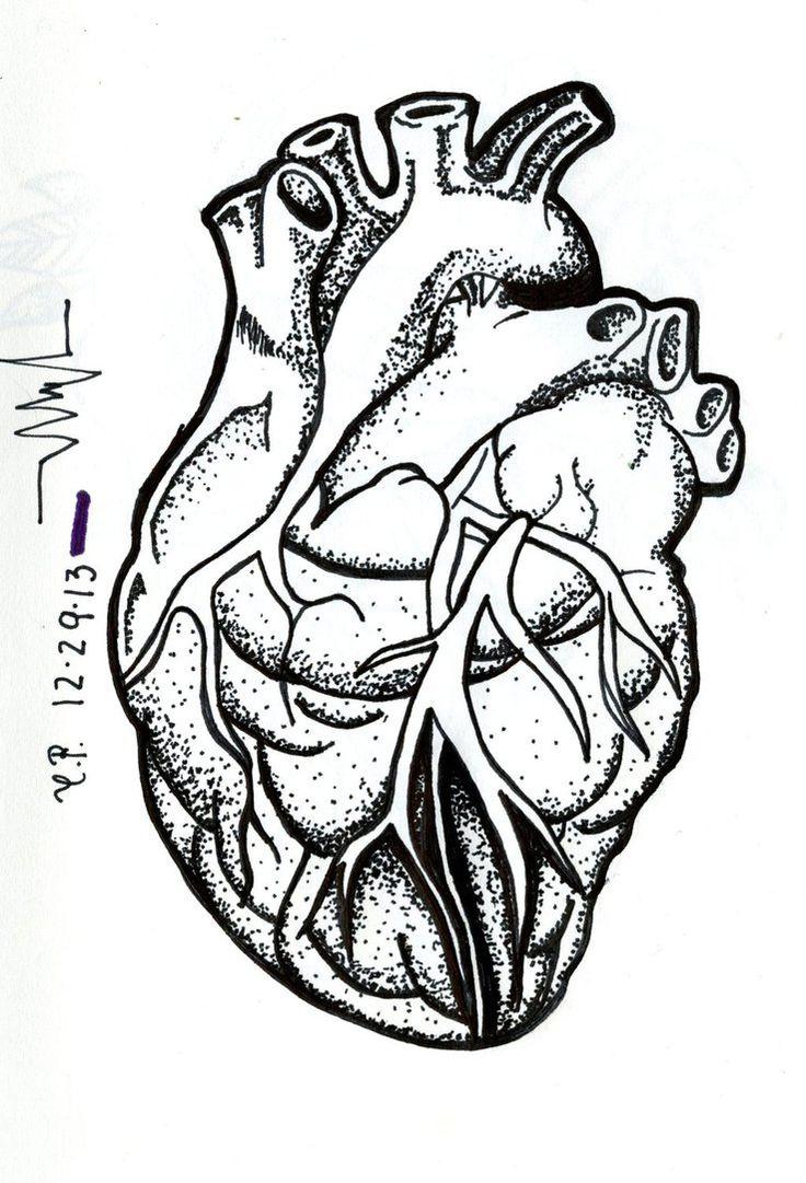 53 Best F U N N Y Images On Pinterest: 17 Best Ideas About Human Heart Tattoo On Pinterest