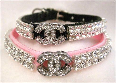 Chanel Collar Dog Style Pinterest Collars And Chanel