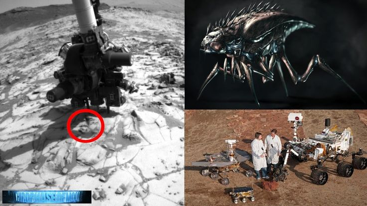 956 best images about Alien Base Video Files on Pinterest ...