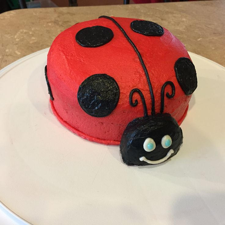 25+ Best Ideas about Ladybug Smash Cakes on Pinterest ...