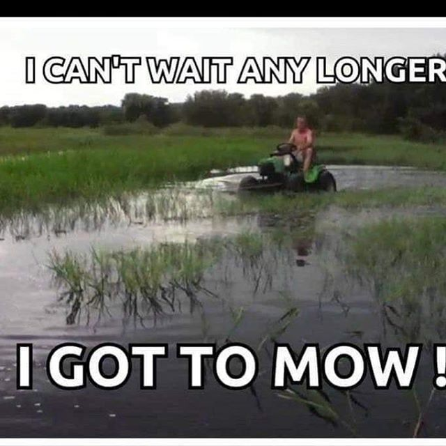 Pretty Much Sums Up The Lawn Care Business During The Month Of May Lawn Care Business Lawn Care Lawn