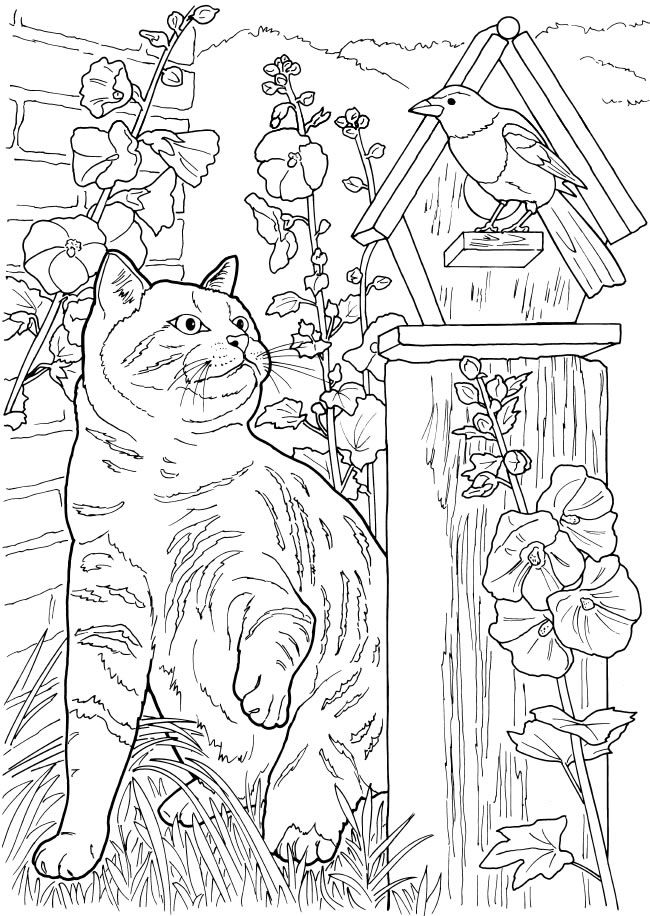 welcome to dover publications - Nature Coloring Pages For Adults