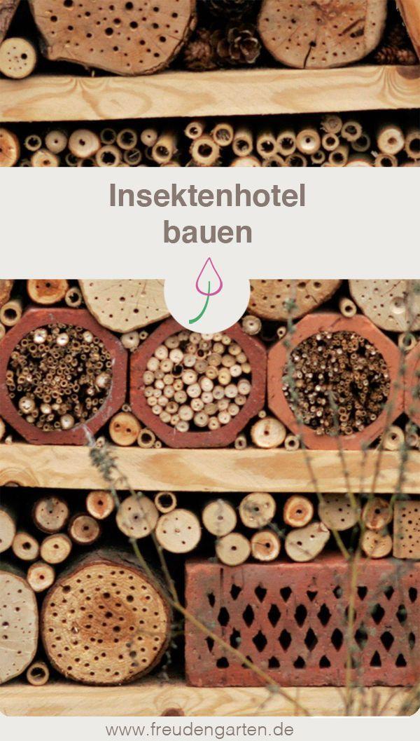 Hôtel des insectes pour les abeilles et autres insectes