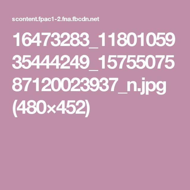 16473283_1180105935444249_1575507587120023937_n.jpg (480×452)