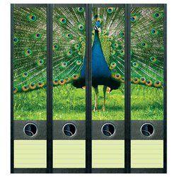 les 4 étiquettes décoratives autocollantes pour dos de classeurs - LAPADD.com