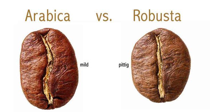 Kies je voor milde of pittige koffie?