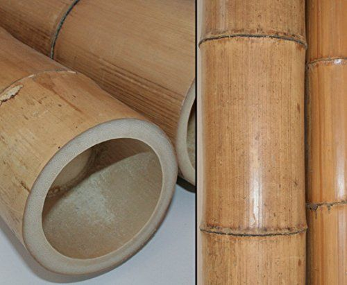 Bambusstange 290cm gelbbraun Durch. 12,5 bis 15cm, Moso Natur hitzebehandelt - Bambus Bambus Rohr Bambus Latten farbige Bambusrohre Bamboo Bambus Halbschale Bambusstangen --> großes Sortiment an Bambusrohre und Rohre aus Bambus Bambus-Rohre