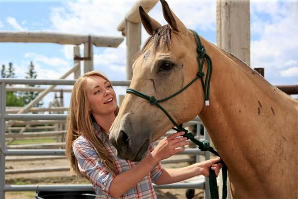"My TV: Daniela wonders about the state of the ""family friendly"" Homeland on CBC http://www.myentertainmentworld.ca/2013/03/is-heartland-still-rated-g/"
