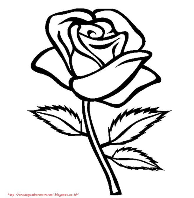 15 Gambar Mewarnai Bunga Mawar Untuk Anak Paud Dan Tk Adult Coloring Pages Bunga Warna
