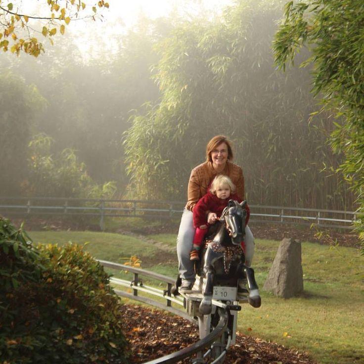 Tip voor een uitstap! Wildpark en vrijetijdspark Klotten Cochem bij de Moezel. https://blog.kreanimo.com/wildpark-en-vrijetijdspark-klotten-cochem/