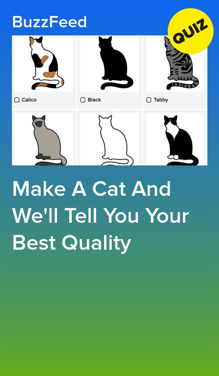 Make A Cat And We'll Tell You Your Best Quality | Quizzes