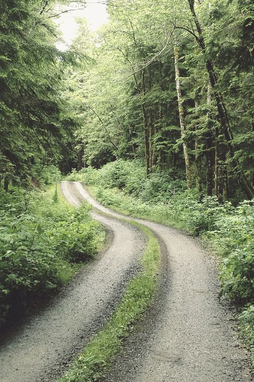 where the road ends; the adventure begins