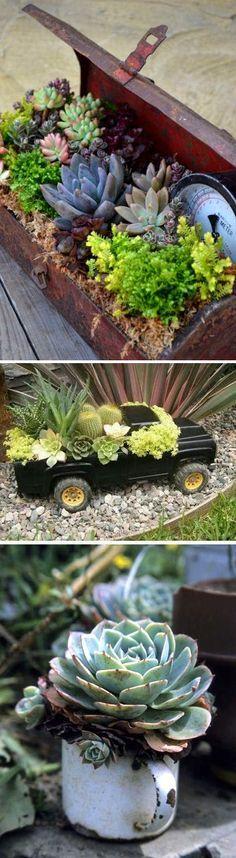 J'adore vraiment l'idée de fleurir n'importe quel objet avec des plantes grasses et des cactus !